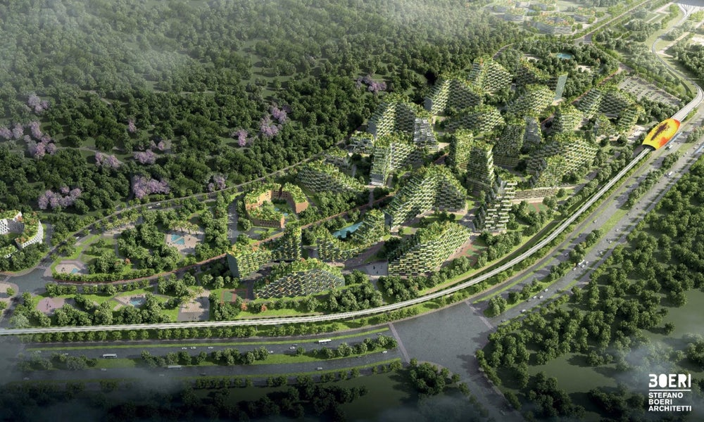 china-forest-city-4
