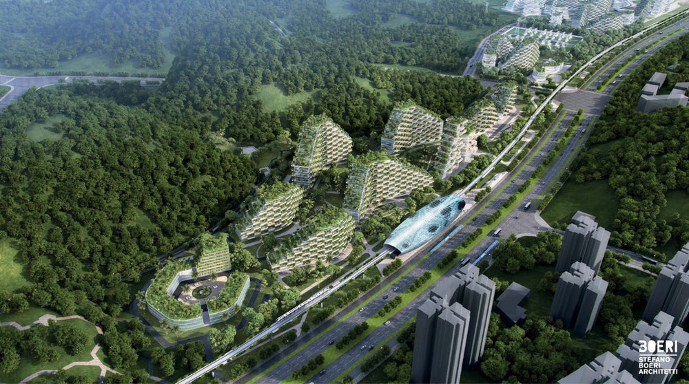china-forest-city-5
